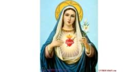 Tranh thêu chữ thập Lavender LV3035 Đức mẹ Maria 43x51