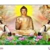 Tranh đính đá Như Lai Phật Tổ LV323 Lavender 110x75