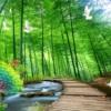 Tranh đính đá Phong cảnh Trúc báo bình an LV370, kích thước 135x85 cm