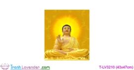 [T-LV3210] Tranh thêu chữ thập Phật tổ như lai (kích thước nhỏ 43x47cm)
