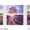 [T-LV3299] Tranh thêu chữ thập Hương sắc Lavender (Bộ 3) (kích thước trung bình 125x43cm)