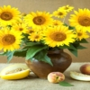 Tranh đính đá Bình hoa hướng dương