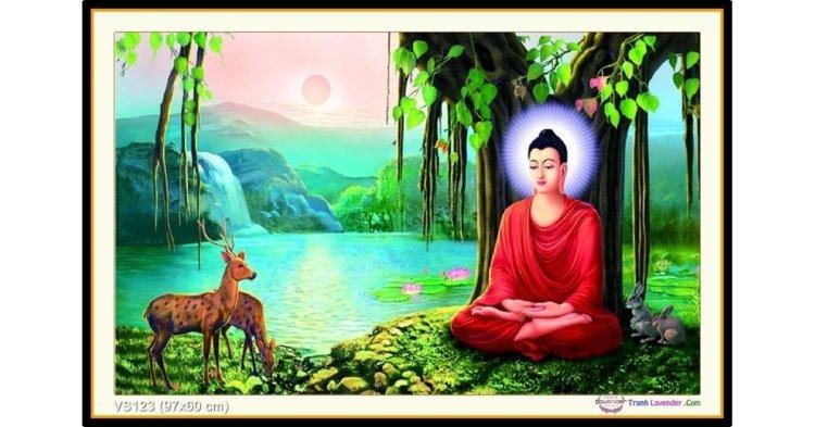 Tranh đính đá Thích Ca Mâu Ni Phật (khổ trung bình) ✅97x60 cm -️ VS123