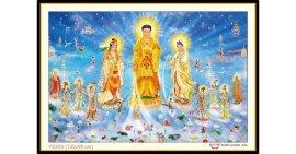 Tranh đính đá Tây Phương Cực Lạc Thánh Chúng A Di Đà Phật (khổ lớn) ✅130x86 cm -️ VS240