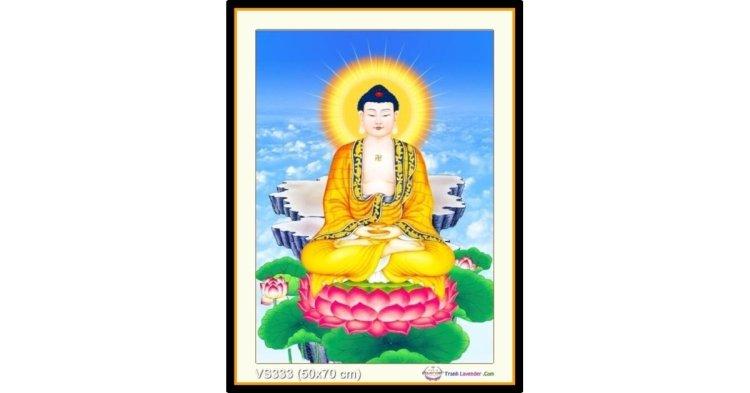 Tranh đính đá Đức Phật Dược sư (khổ nhỏ) ✅50x70 cm -️ VS333